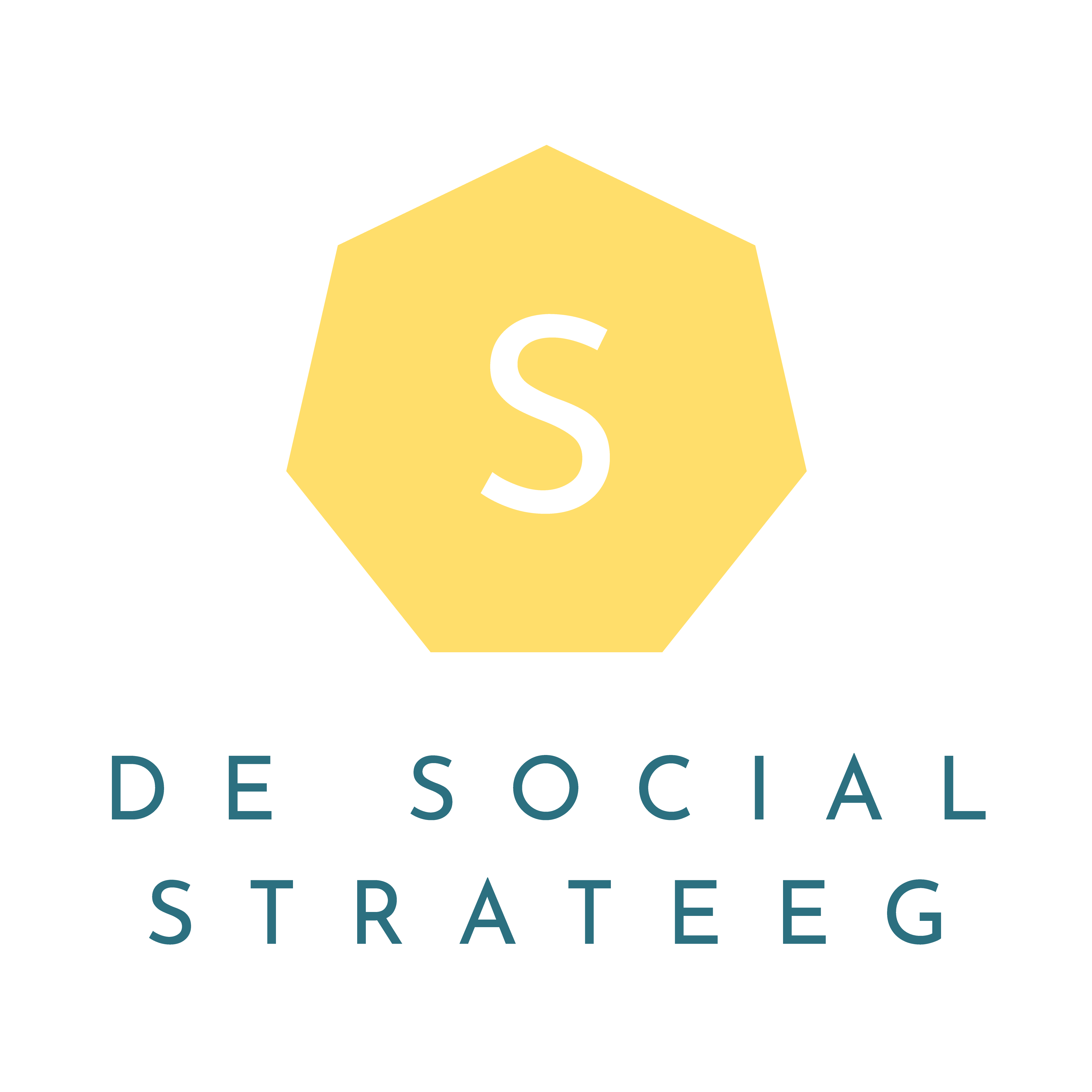 De Social Strateeg
